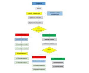schemat diagnostyki maintrac